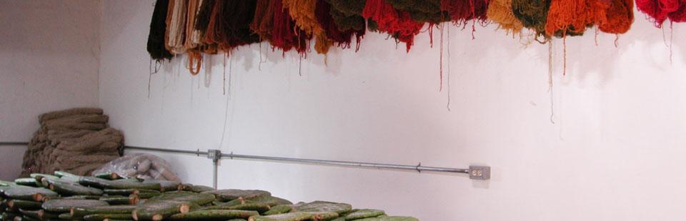 Proceso de rescate del Sarape de Saltillo - Madejas teñidas con grana cochinilla