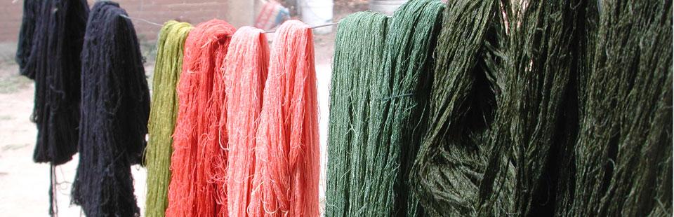 Proceso de rescate del Sarape de Saltillo - Madejas teñidas en proceso de secado